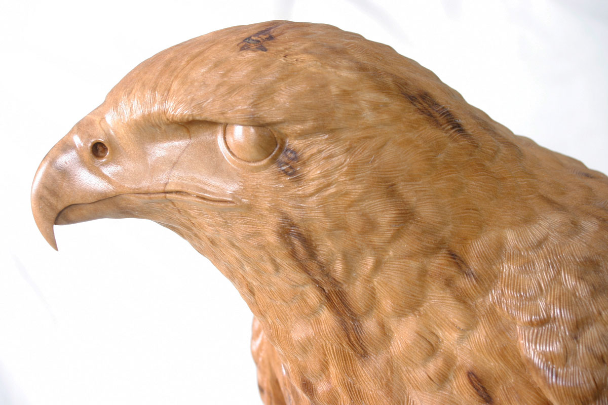 Harris's Hawk Sculpture