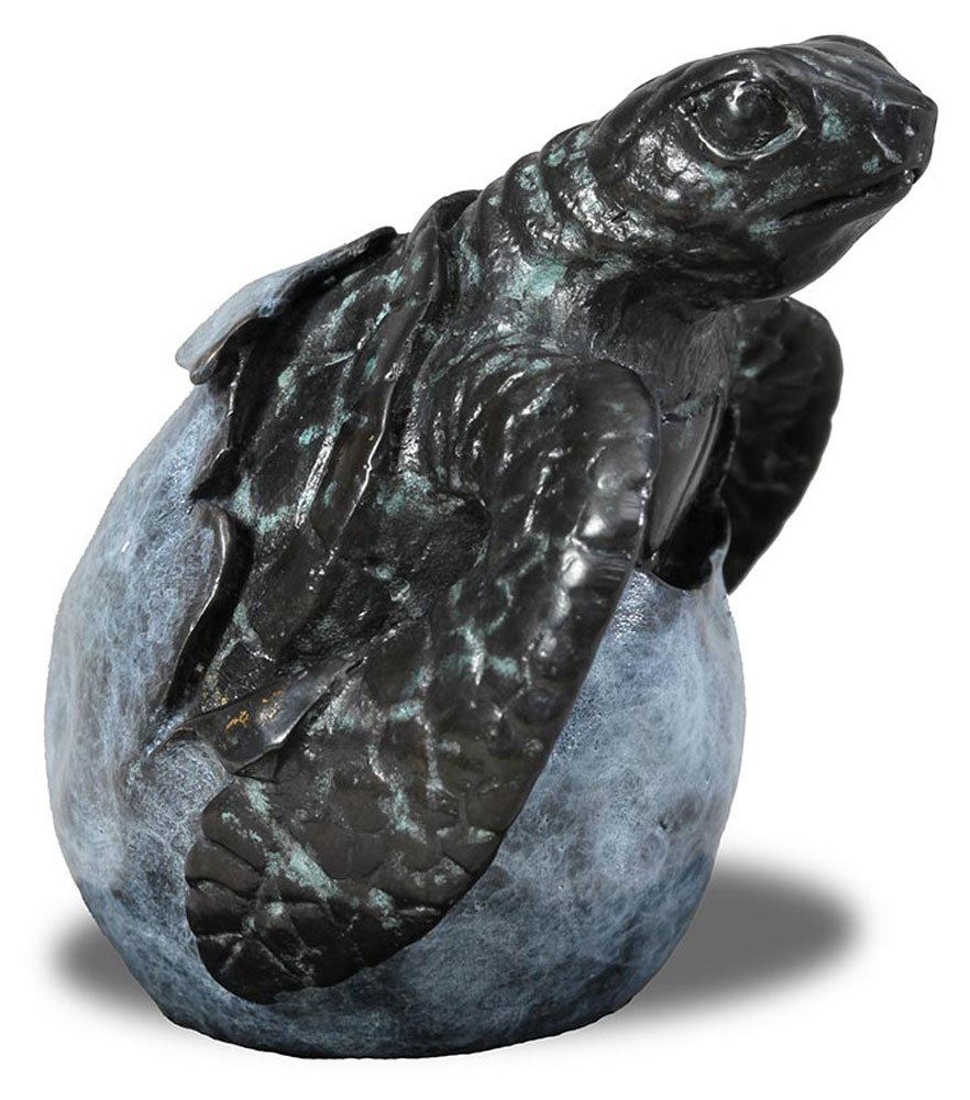 Bronze Hatching Turtle
