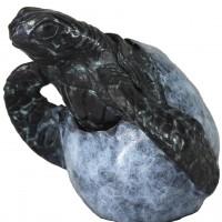 Bronze Hatching Turtle