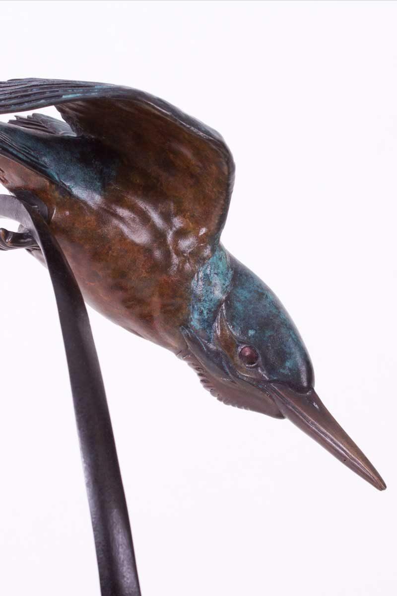 Kingfisher Bronze