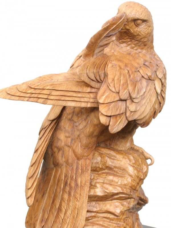Preening Falcon Original