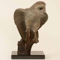 Barn Owl Bronze Coloured Patina