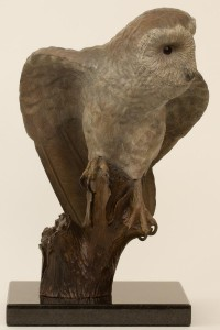 Barn Owl Bronze