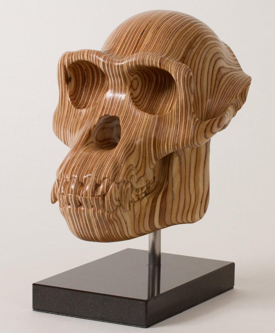 Chimp Skull Sculpture