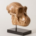 Chimp Skull Sculpture