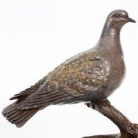 Turtle Dove Bronze. Sold.
