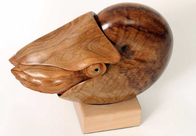Nautilus Sculpture, Hand Carved By Bill Prickett